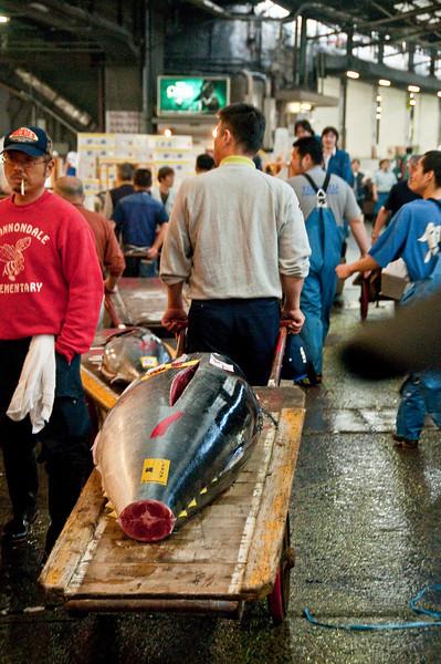 Tsujiki Fish Market-6