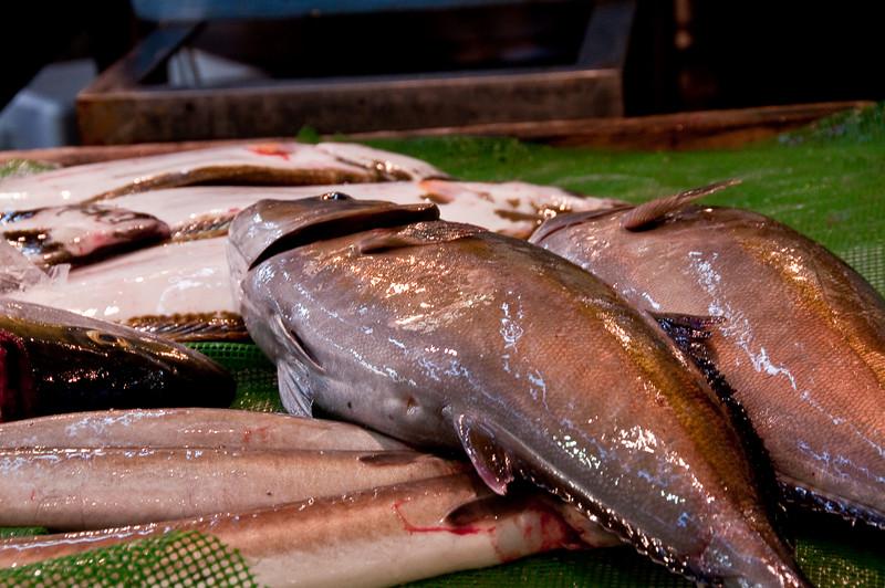 Tsujiki Fish Market-4