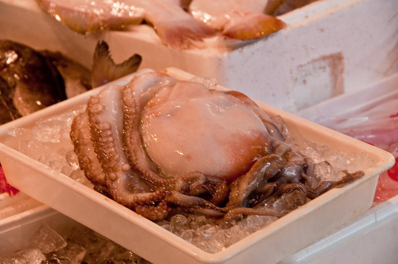 Tsujiki Fish Market-26