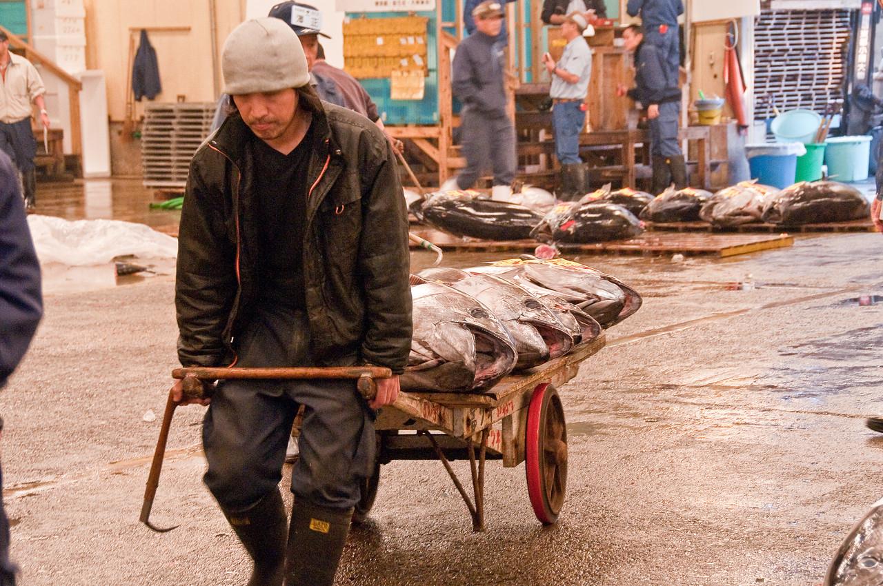 Tsujiki Fish Market-14