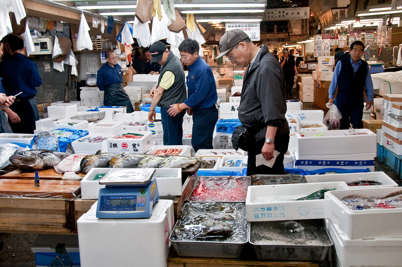Tsujiki Fish Market-17