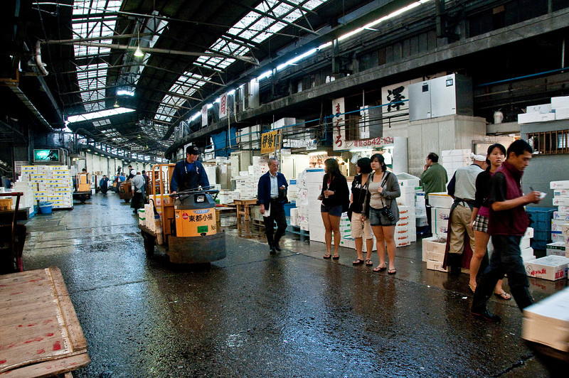Tsujiki Fish Market-15