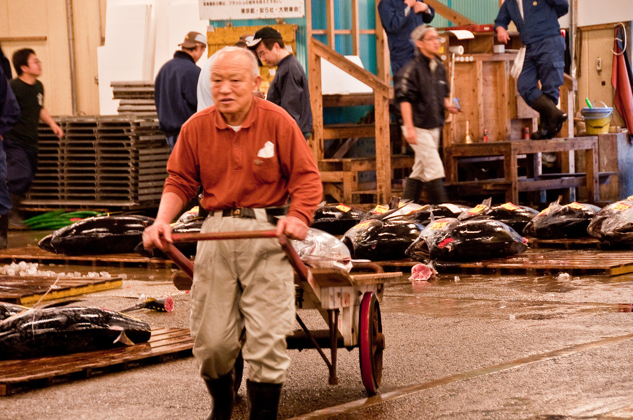 Tsujiki Fish Market-11