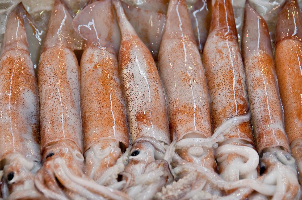 Tsujiki Fish Market-35