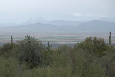 At the Arizona-Sonora Desert Museum.