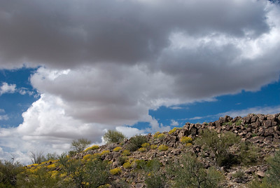 We take a short hike in the Saguaro National Park.