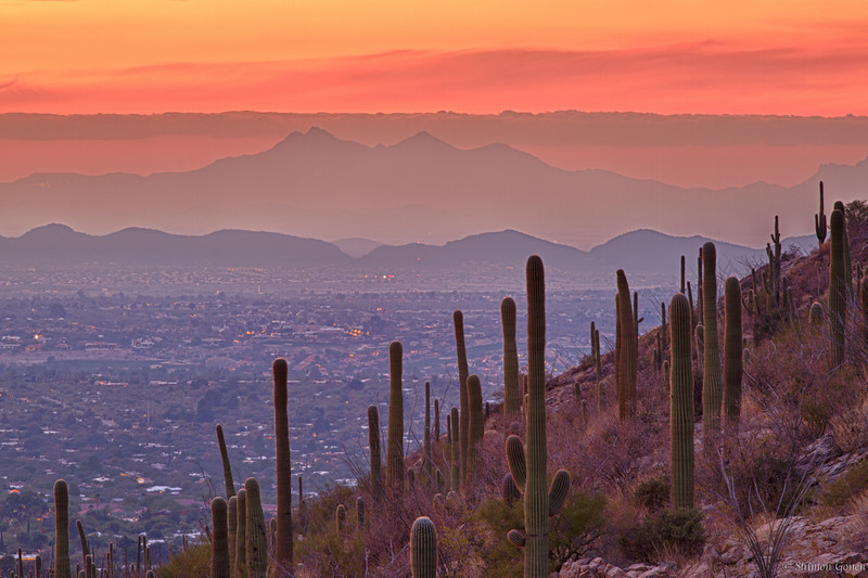 Tucson Sunset from Pima Canyon