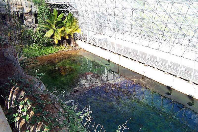 This is their one million gallon saltwater ocean in the savannahs section. It was hot and humid in this section. We weren't allowed in the rain forest.