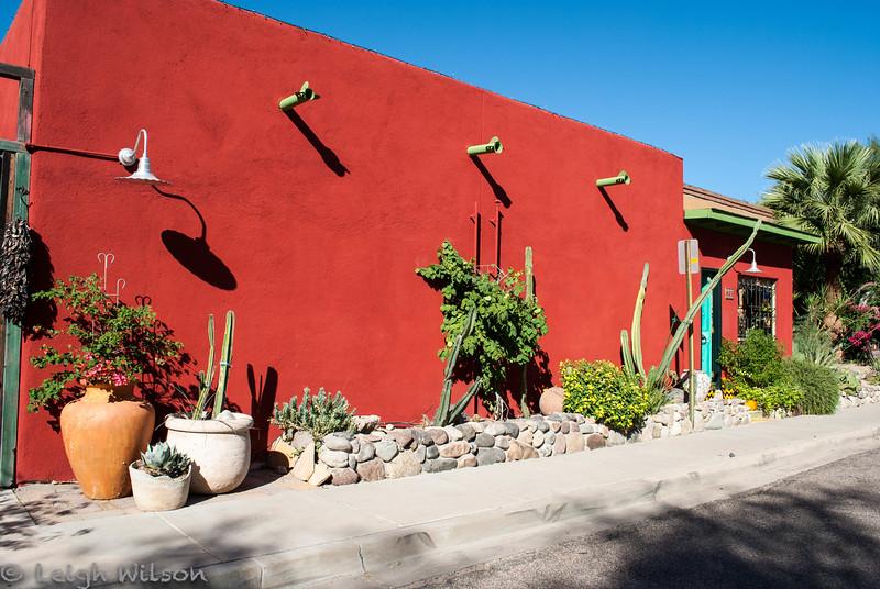 Tucson Bike Tour