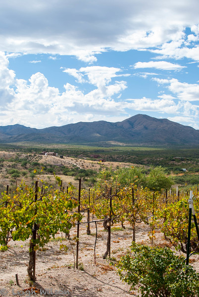 Sonoran Tasting Tours<br /> Charron Vineyards