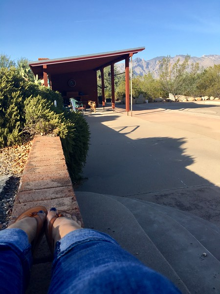 Enjoying cooler weather at Airedale Ranch