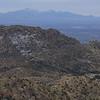 View to the Santa Rita Mountains