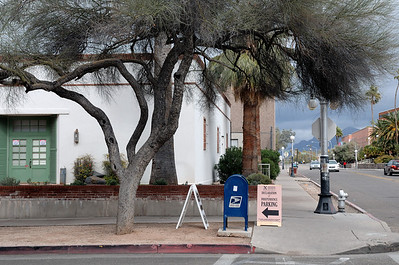 Taken on the campus of the University of Arizona, Tucson.