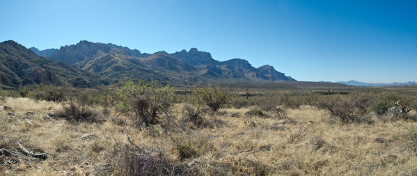 Tucson January 2011