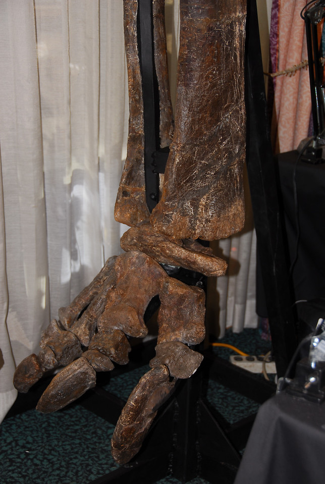Totally real. This foot and leg was at least 6-8 feet high.