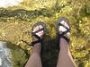 <b>Wet Feet</b><br>
