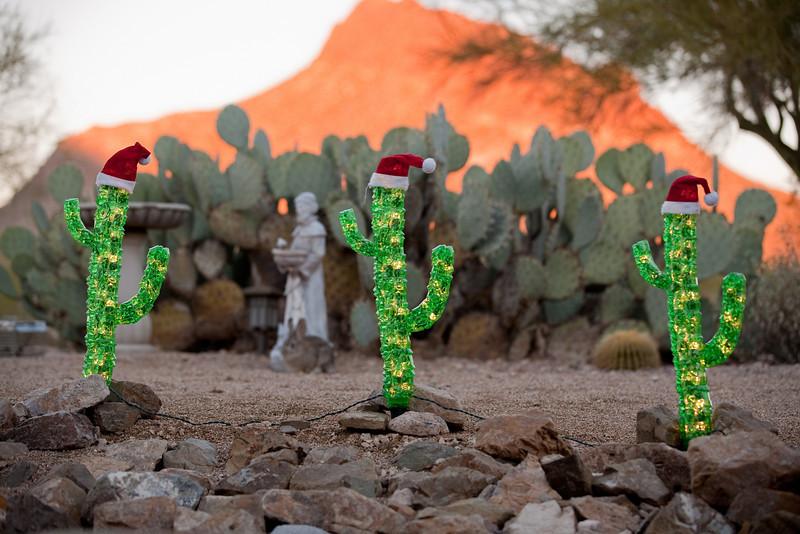 Christmas morning in Tucson, rockin' it desert style.