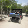 Edventure Tours - jungle ride, zip lining and cenote exploring
