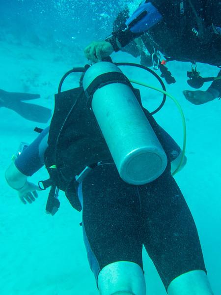 Scuba Diving - Ocean