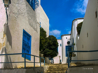 Lovely blue and white village [Sidi Bou Said]