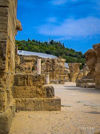 Ruínas de Termas Romanas [Cartago]