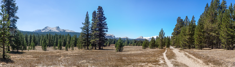 View of the meadow across from the Tuolumne Meadows Grill looking more left than the previous Panorama