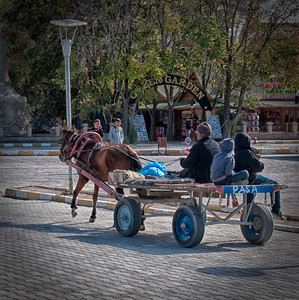 Horse and cart.