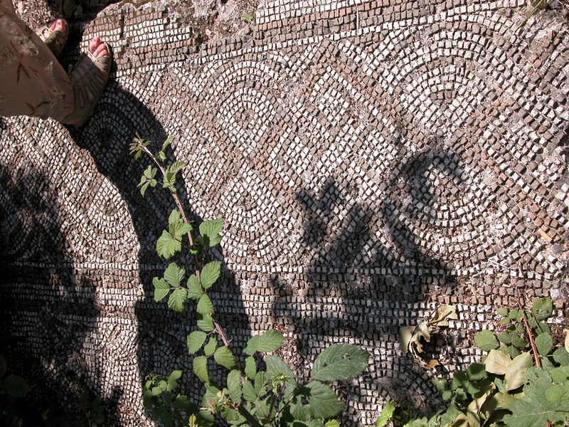 Remains of Mosaic House