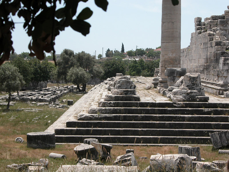 steps of the crepidoma
