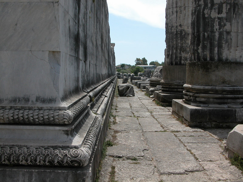 Cella wall and first row of columns