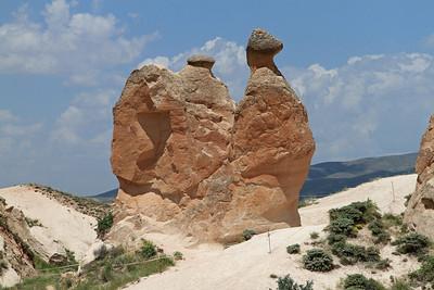 Fairy chimneys In shape of a camel), Cappadocia.
