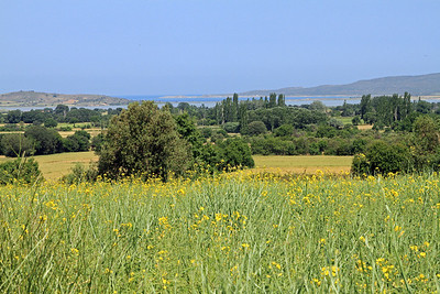 The view from Hill 60 to Suvla Bay.  The battle at Hill 60 was intended as a last-ditch Allied attempt to break northwards out of the restricted beachhead at Anzac Cove and link up with the Allied force sited at Suvla Bay.