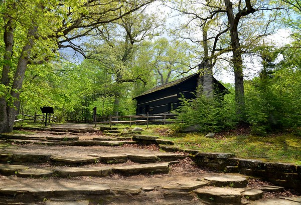 Natural Limestone steps leading to Leiber Cabin, Turkey Run State Park, Indiana