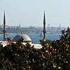 Bosphorus, Mosque and Berries