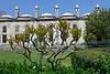 014  Istanbul - Blauwe Moskee