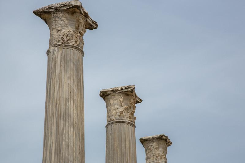 Gymnasium columns
