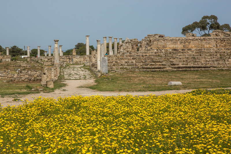 Ancient site of Salamis