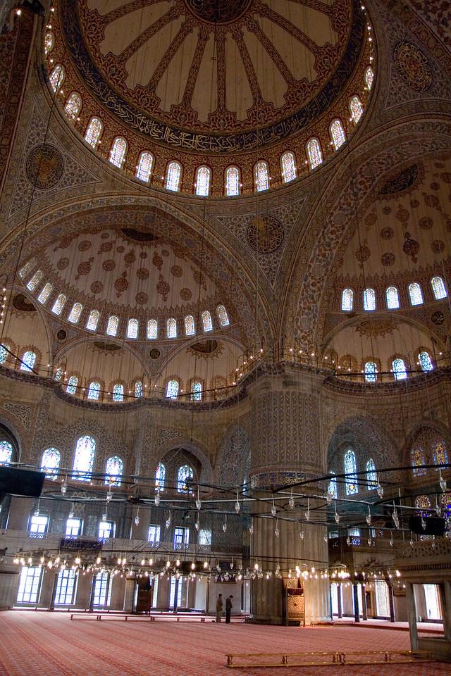 Turkey_NGingold_01