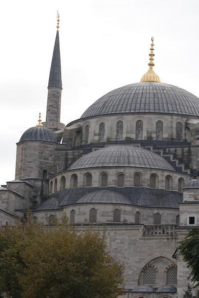 Turkey_NGingold_13
