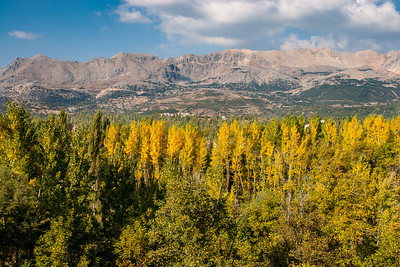 Autumn colors in the Taurus mountains