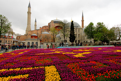 largest flower carpet in the world outside Hagia Sophia