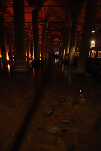 carp swimming in the cistern beneath Istanbul