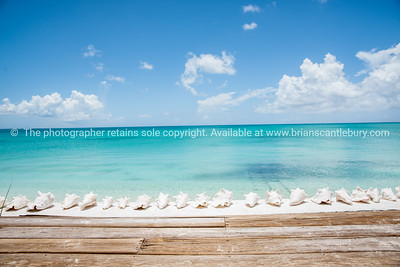 Beach beyond deck and row of conch shells, Caribbean white sand, turquoise sea, and blue sky. Providenciales, Turks & Caicos.