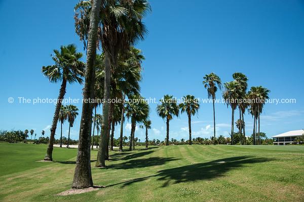 Golf course, Providenciales, Turk & Caicos.