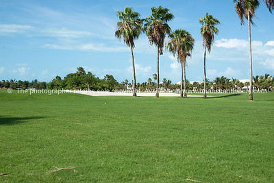 Golf course, Providenciales, Turk & Caicos. Prints & downloads.