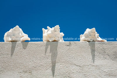 Three conch shells on wall with blue sky.