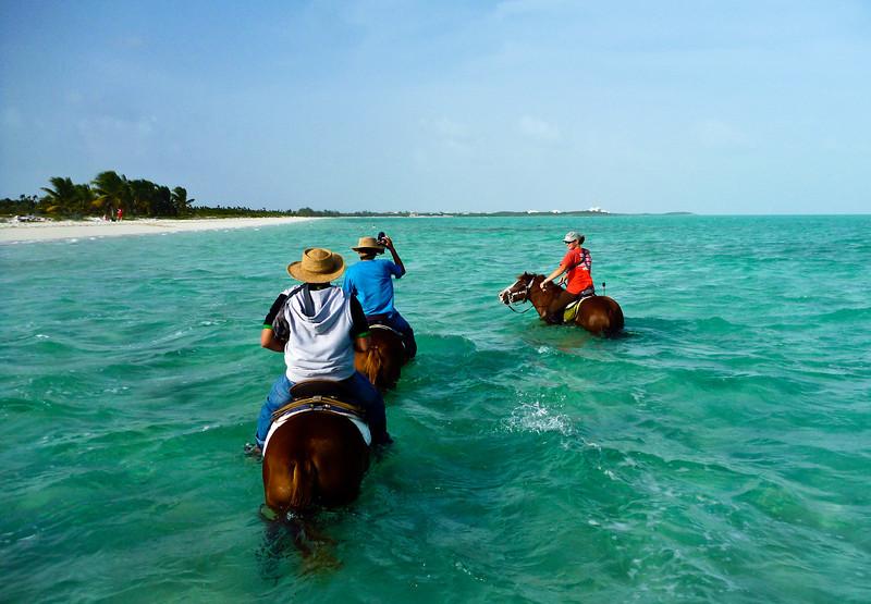 Provo Ponies at Long Bay Beach