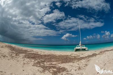 Docked at Iguana Island