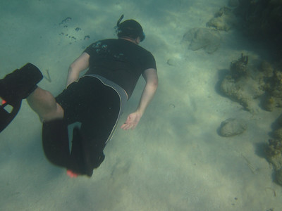 Geoff dives for the bottom of the reef.