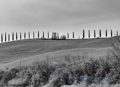 Road to Val D'Orcia